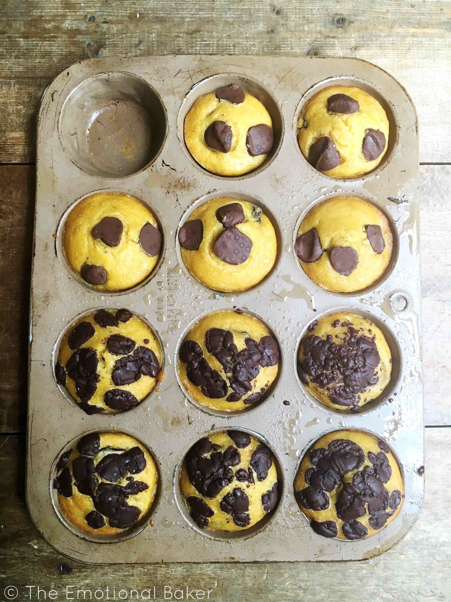 Pumpkin Banana Muffins -- A transitional muffin to get you in the mood for fall - with chocolate chips, of course!!