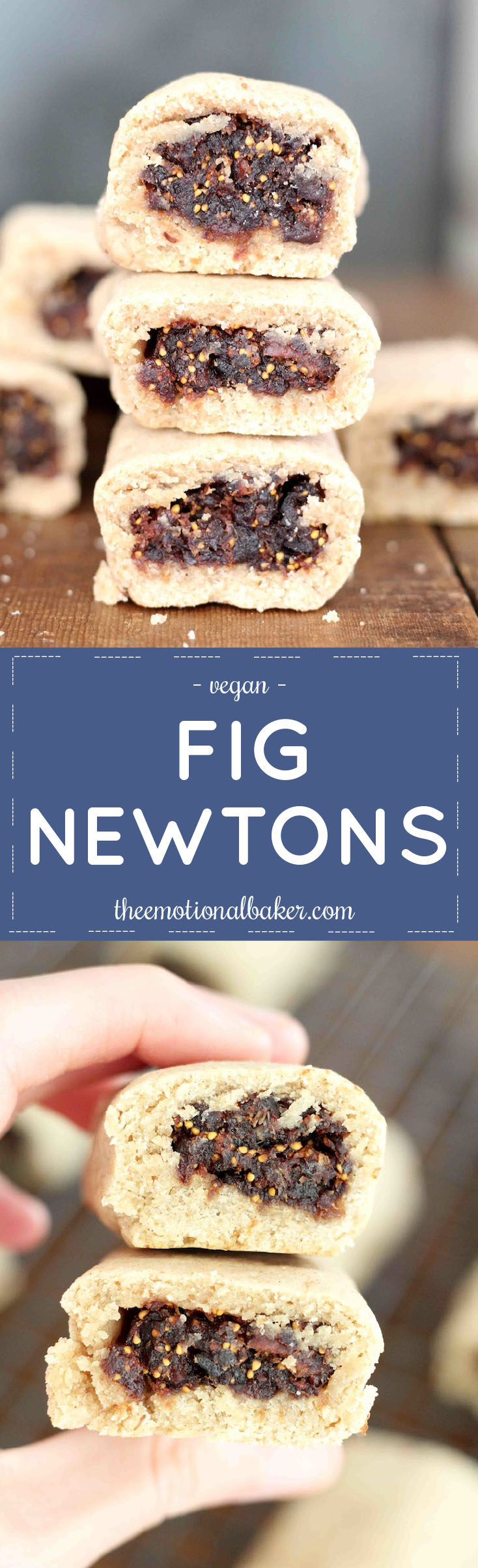 Homemade is always better! The same is true for these scratch made Fig Newtons!